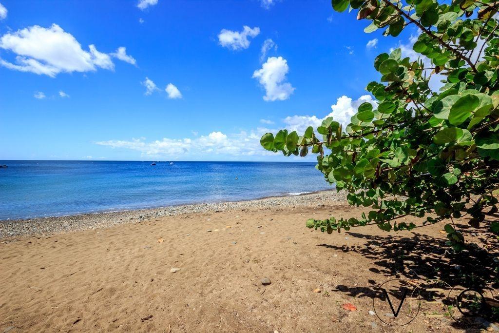 Anse-Caraibes-Pointe-Noire