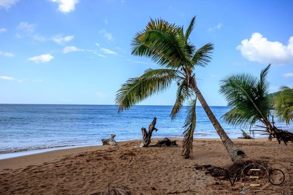 Anse-de-la-perle-Guadeloupe