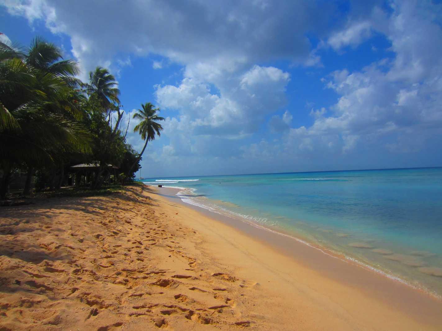 Plage Guadeloupe : Anse du Souffleur