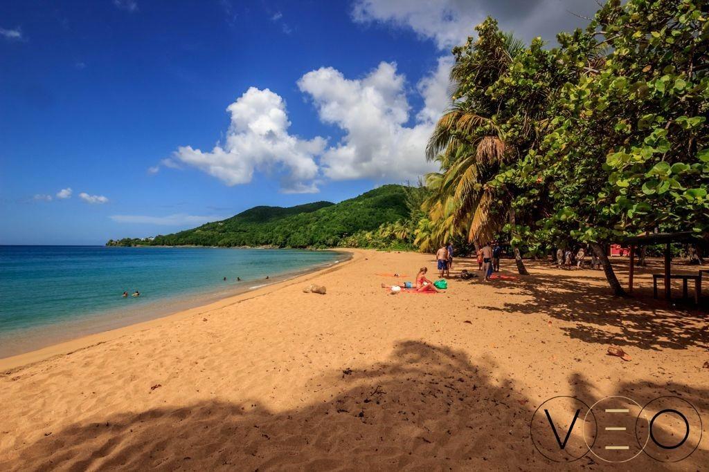 Plage-de-Grande-Anse-Guadeloupe