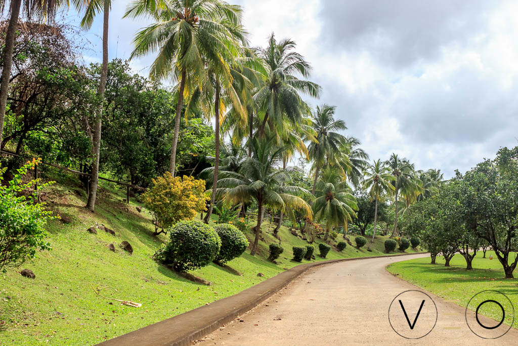 Habitation la Mauny, Parc Arboré, Martinique