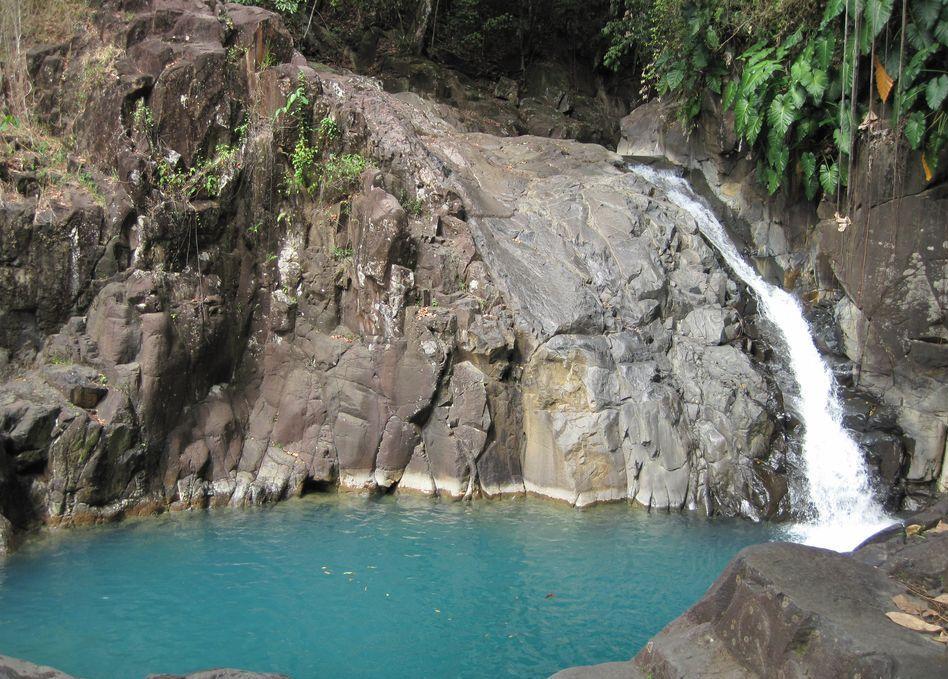 Acomat, Basse-Terre, Guadeloupe