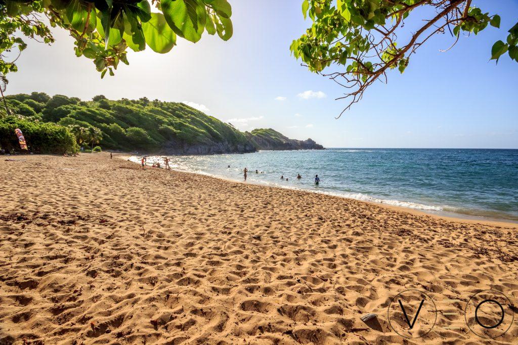 L'Anse l'Etang en Martinique