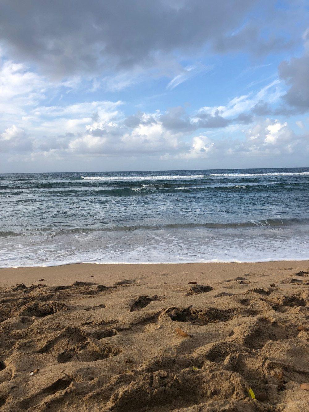 Surf débutant Martinique