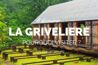 visite-grivelière-guadeloupe-vieux-habitants