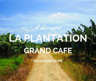 Visiter la Plantation Grand Café