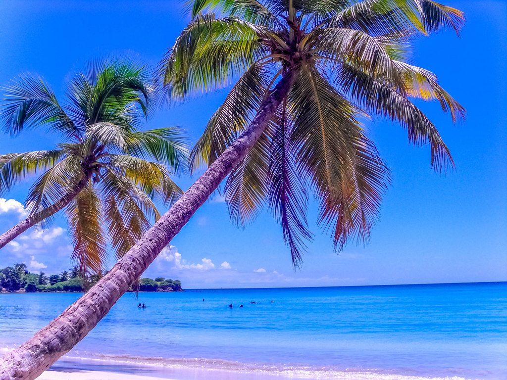 Les Salines, une superbe plage pour se détendre entre copines