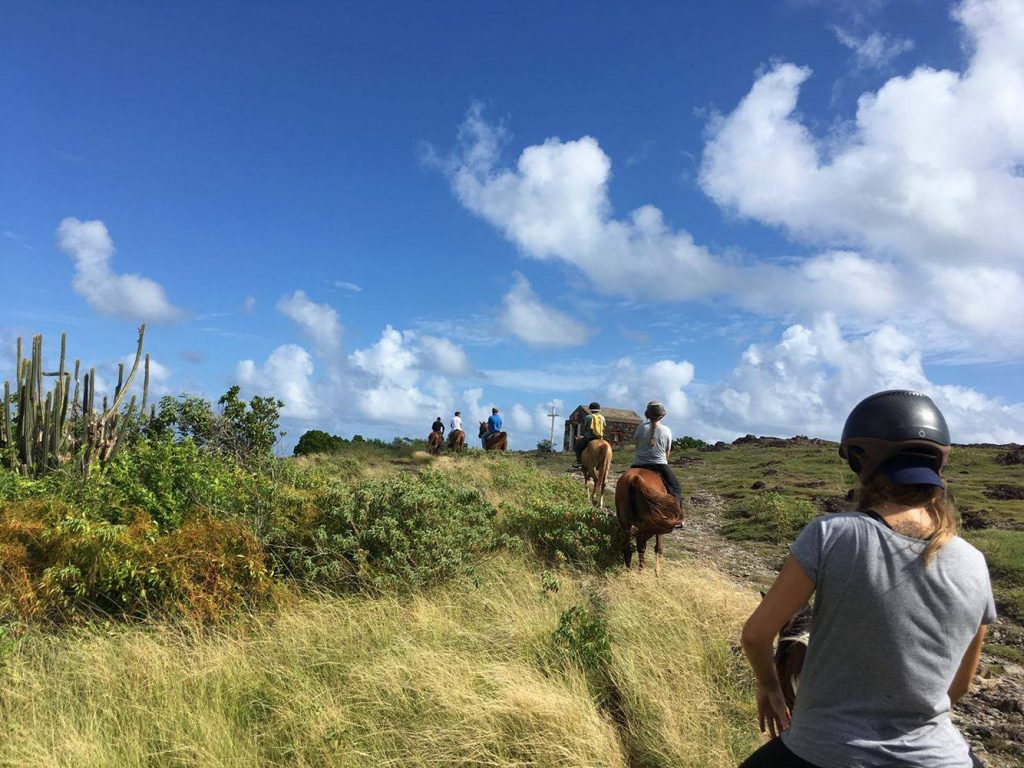 EVJF-Martinique-Excursion-Cheval-Macabou