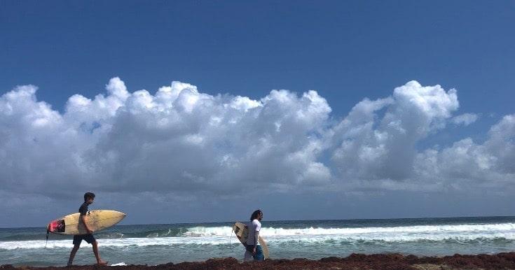 surf martinique anse charpentier