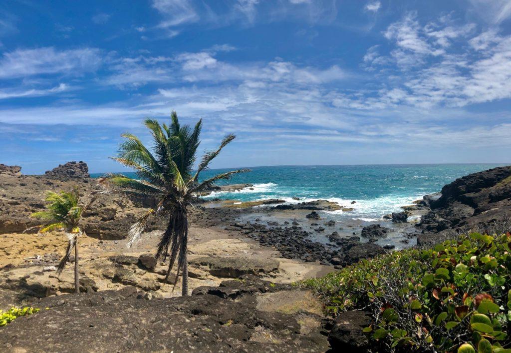 Presqu'île de la Caravelle grand circuit