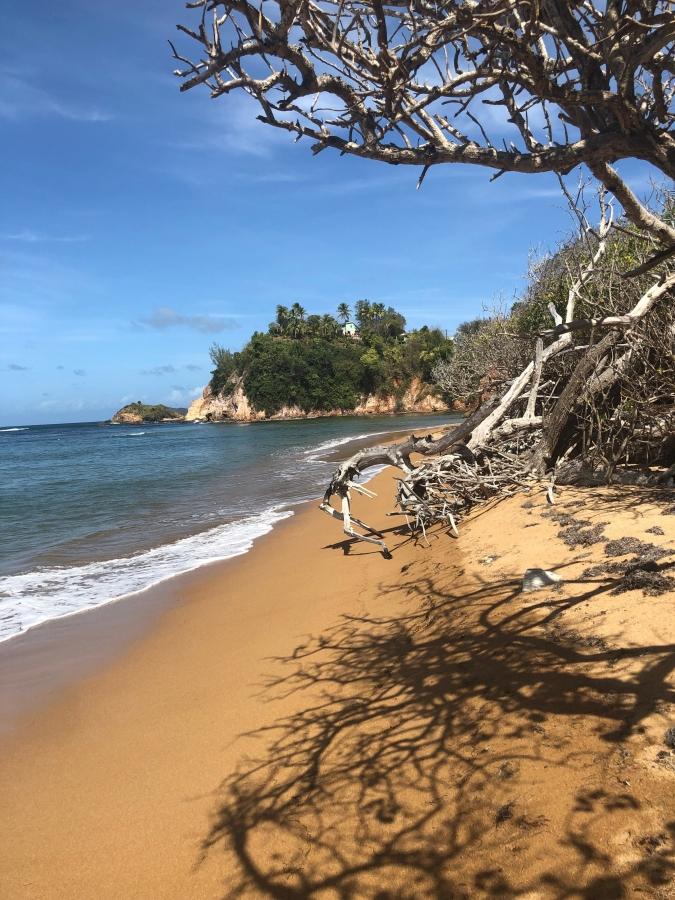 Sable rouge Presqu'île de la Caravelle