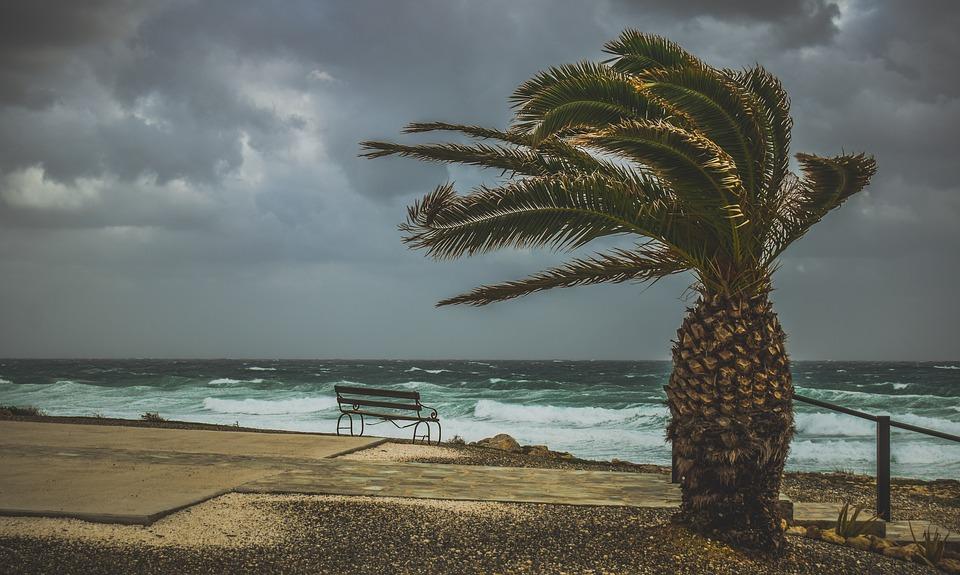 surf Martinique danger cyclone