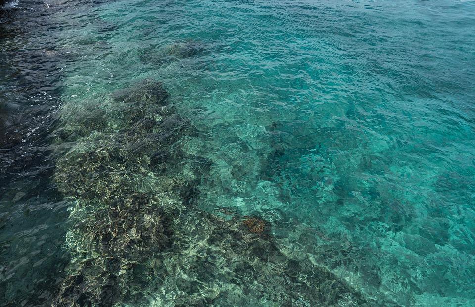 surf martinique danger reef