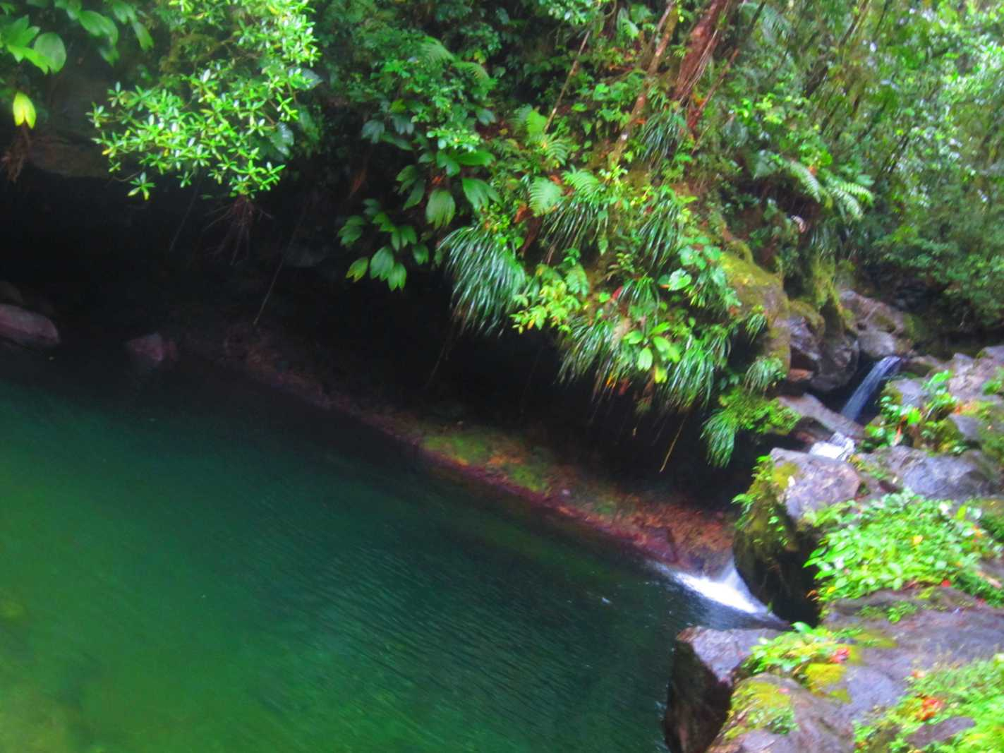cascade Guadeloupe Bassin Paradise