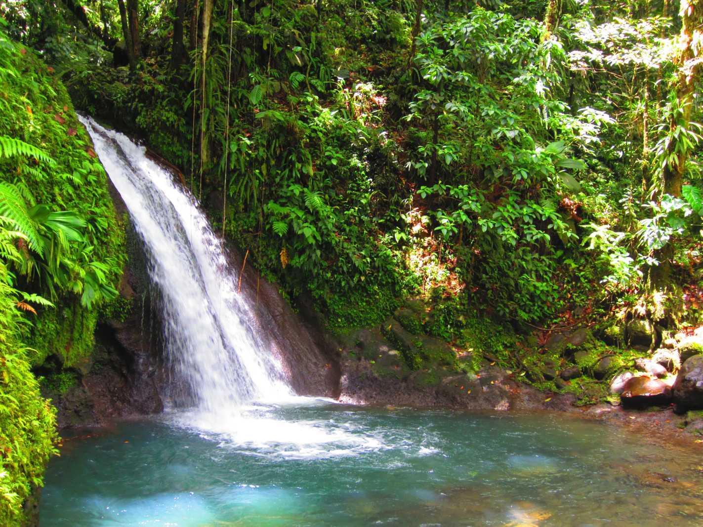 Top cascade Guadeloupe en Basse-Terre