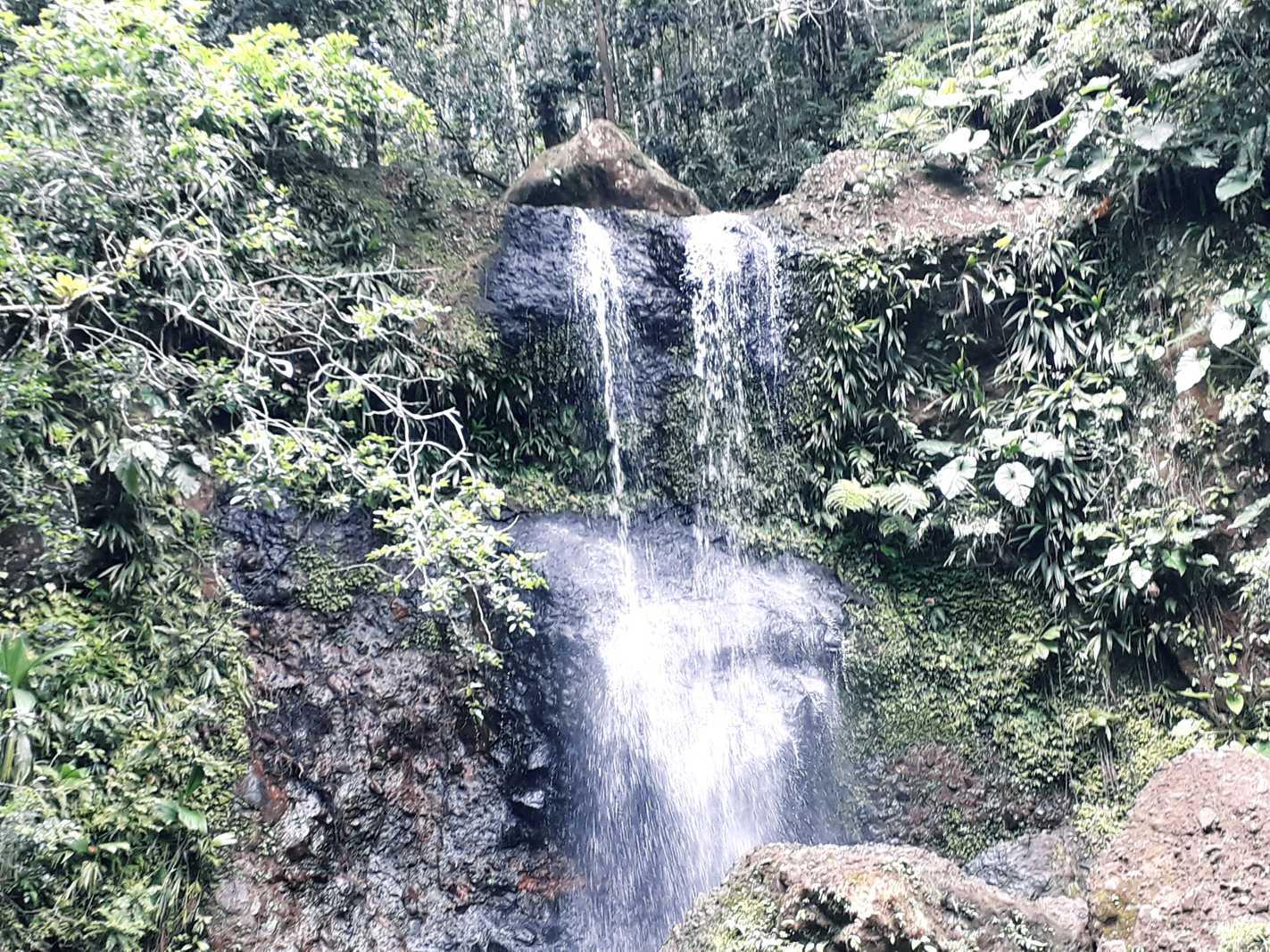 Cascade en Basse Terre